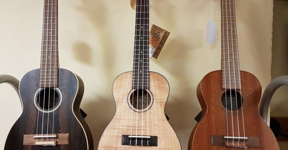 Guitares Etalle 2019-8